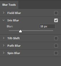 آموزش کار با فیلتر Iris Blur در فتوشاپ