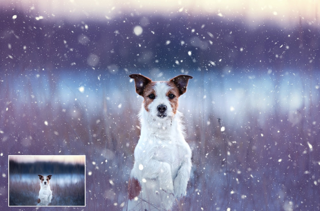 اکشن بارش برف کاملا طبیعی در عکس برای فتوشاپ