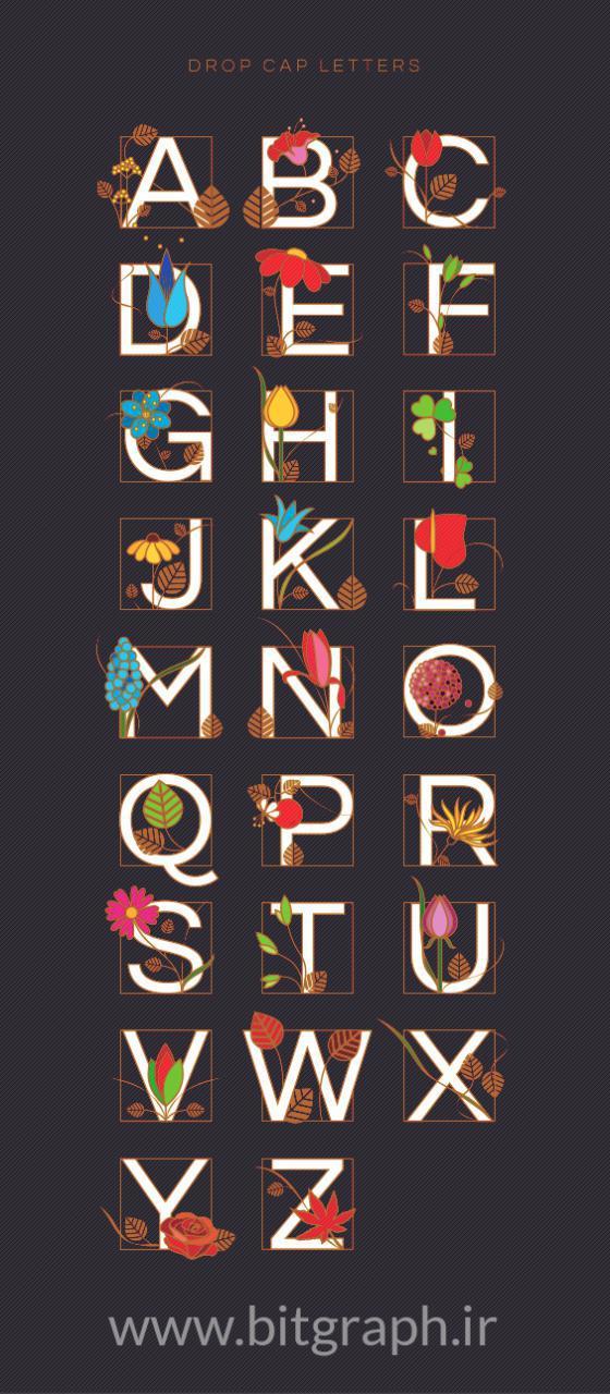 مجموعه ای زیبا از وکتور های تزیینی حروف انگلیسی
