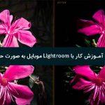 آموزش کار با Lightroom موبایل به صورت حرفه ای