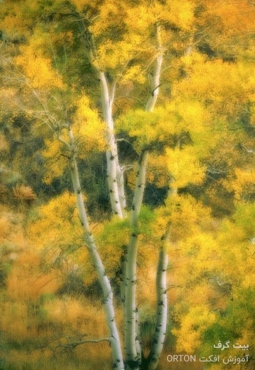 افکت Orton و ایجاد رنگ پیشرفته روی عکس در فتوشاپ