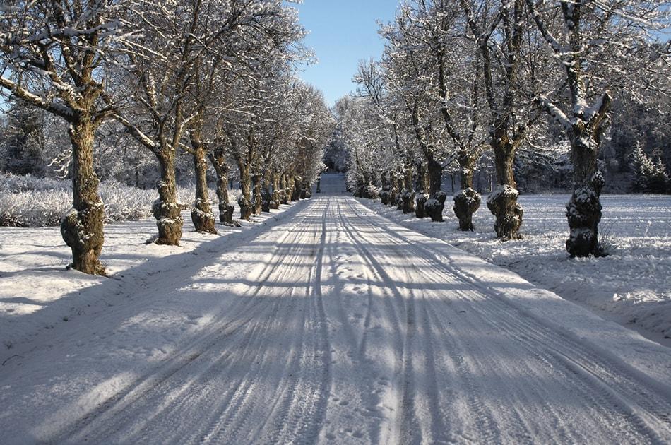 ایجاد تعادل میان میزان رنگ سفید در هنگام عکاسی از زمستان