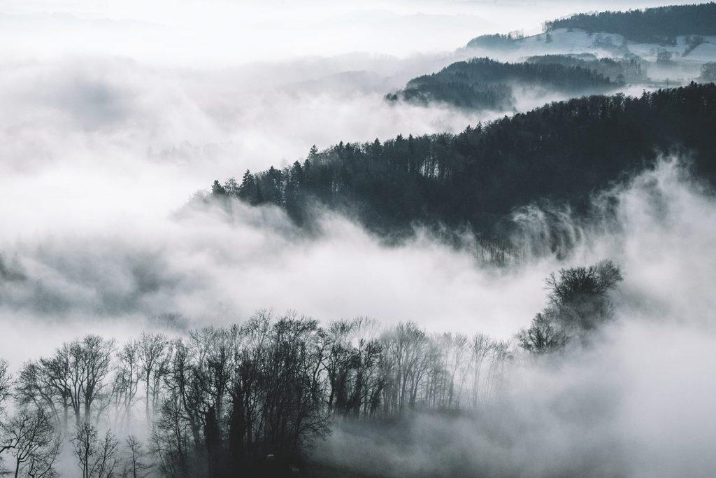 عکاسی منظره در مه