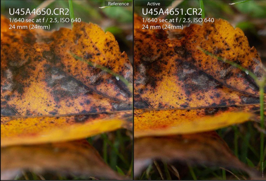 استفاده از فیلترهای پولاریزه در عکاسی از رنگ های پاییزی