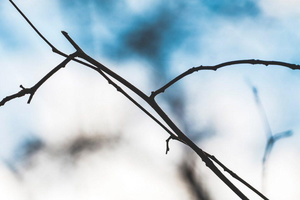 لنز تله در عکاسی منظره