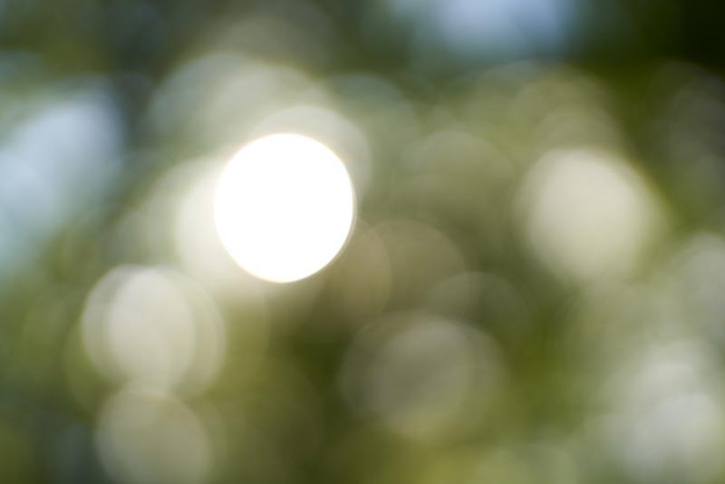 بررسی کیفیت لنز دوربین های سونی برای ثبت بوکه